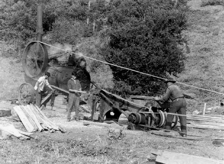 Galería Histórica de Carahue. Sociedad y Época: Primer Banco Aserradero con #Locomovil de #Trovolhue. Gestión del Padre Pedro Pablo. 1942.-  #ghc #carahue #memoria #patrimoniofotografico