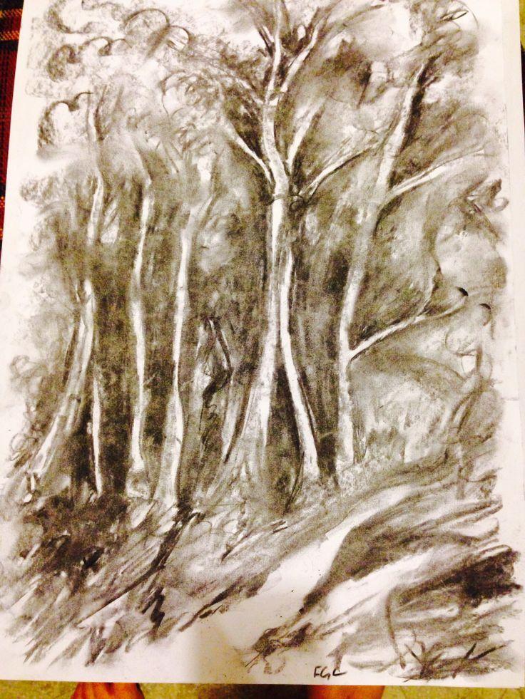 NZ bush. Charcoal drawing.