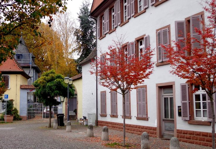 "cityhoppersgarden: "" Autumn in Speyer, Rheinland-Pfalz, October 2015, Germany photography by cityhopper2 """
