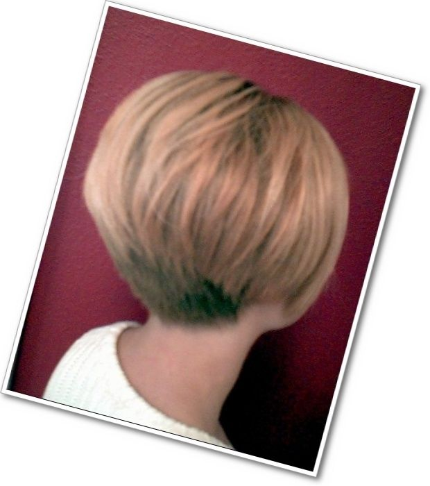 Inverted Bob Back View Category Texture Coarse