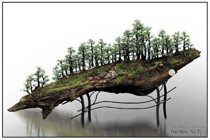Wonderful bonsai… on a hillsideMore Pins Like This At FOSTERGINGER @ Pinterest