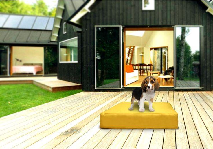 Pet L. Pad sárga babzsák  #beanbag #babzsákfotel #babzsák #design #interior #style