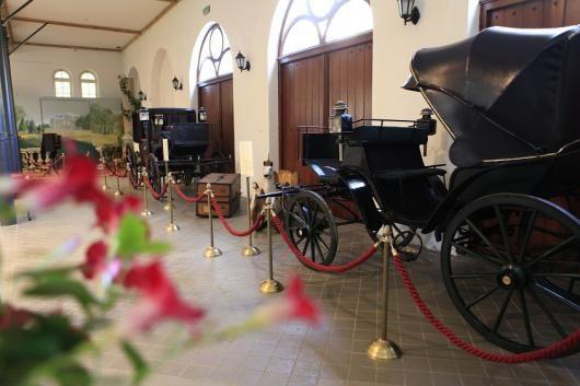 Carriages, Ekspozycje stałe | Muzeum Zamkowe w Pszczynie