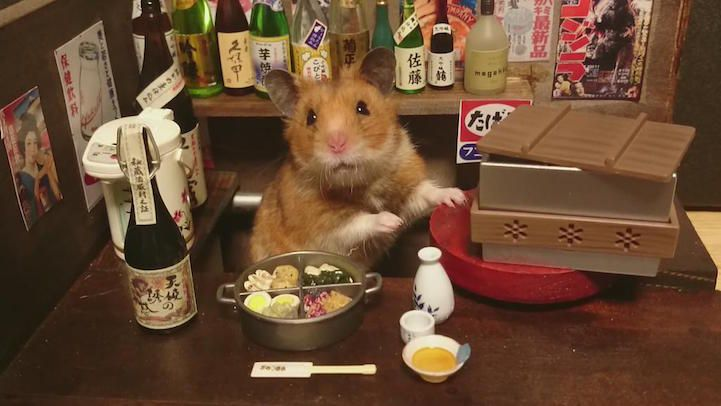 hamsters-bartenders-serving-tiny-food-and-drinks-01