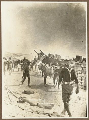 Gallipoli during World War 1 / G. Downes