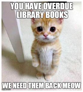 Image result for overdue library book meme