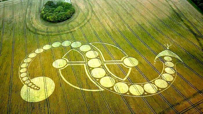Crop circle, July 29, 2011 near Inkpen, Wiltshire.