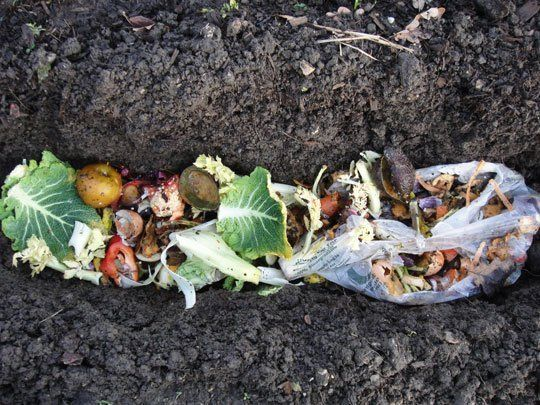 Skip the Bin: Trench Composting