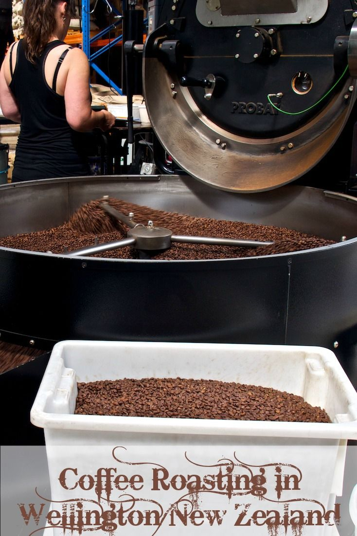 Coffee roasting equiptment at Mojo Roastery in Wellington New Zealand