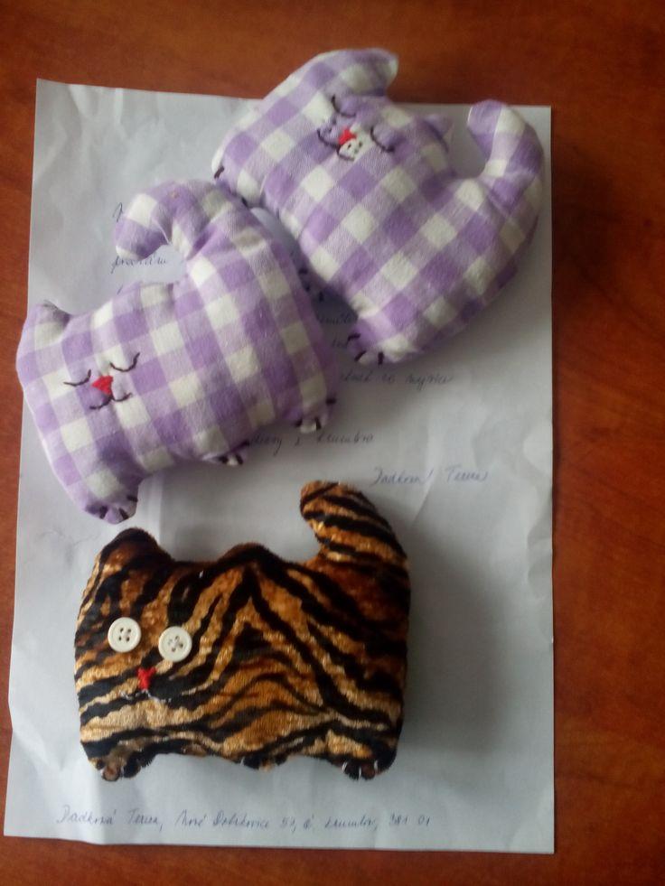 Kočičky (Tereza Dadková)