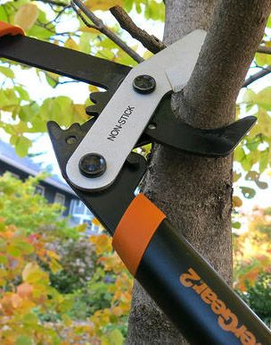 "Searching for a gift for a lawn hobbyist? Fiskars PowerGear2 Lopper is enhanced to maximize leverage for powering through branches up to 2"" in diameter. Meaning tree pruning will be a piece of cake. Or in this case, a piece of wood."
