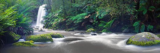 Majestic Hopetoun Falls. Queen of the Otways Waterfalls.