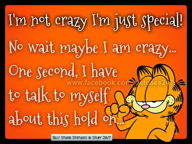 I'm not crazy