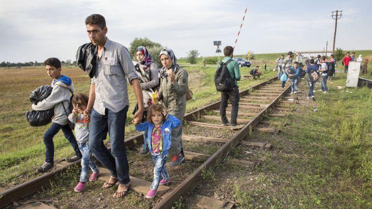 vluchtelingen - Google zoeken