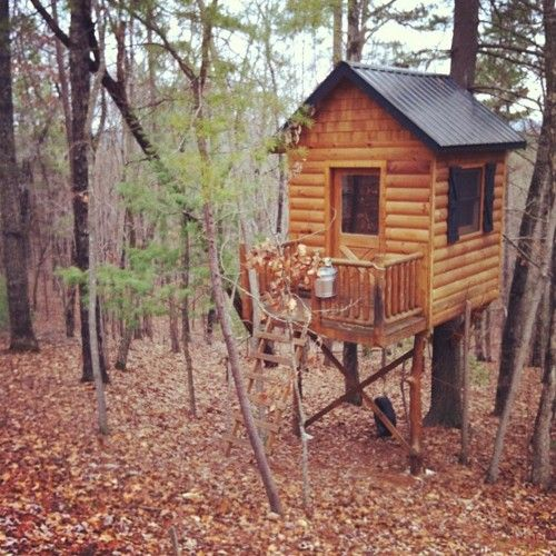 Cute And Cozy Treehouse