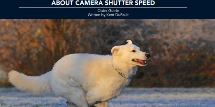 How much do you know about the use of the camera shutter speeds? Probably the basics, right? A fast shutter speed stops action. A slow shutter speed creates blur. And, there you go… I didn't know this. But there are advanced concepts in the use of shutter speed. Kent DuFault has written us a guide…Continue Reading →