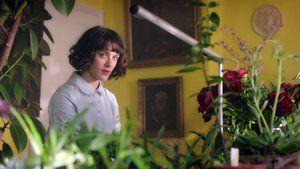 El maravilloso jardín secreto de Bella Brown - Películas online gratis