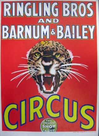 This poster ( or the green background ) has been used longer than any other poster in the Ringling history.