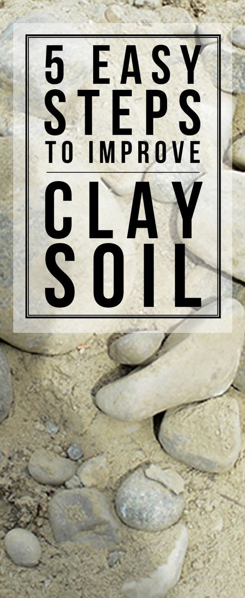 Golden tips for turning clay into beautiful, plantable soil that veggies will THRIVE in!!!