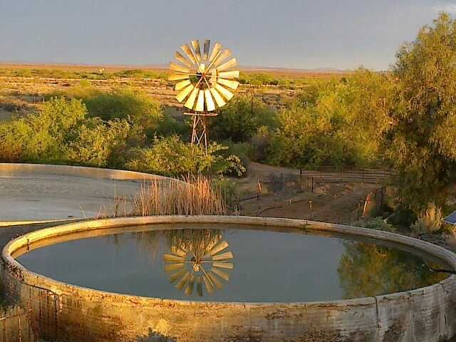 Karoo, Windpump, Dam, Farm, South Africa