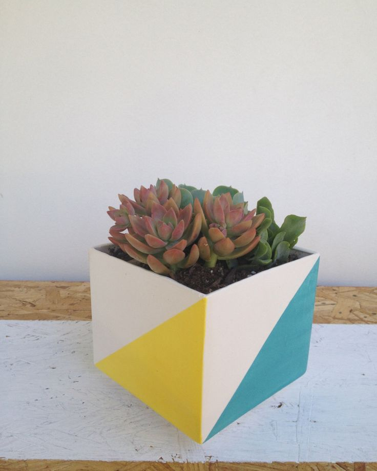 Modern  Square Planter with colors by LunaReece on Etsy https://www.etsy.com/listing/152455052/modern-square-planter-with-colors