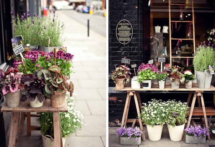 gorgeous little irish flower market in an old wine shop...