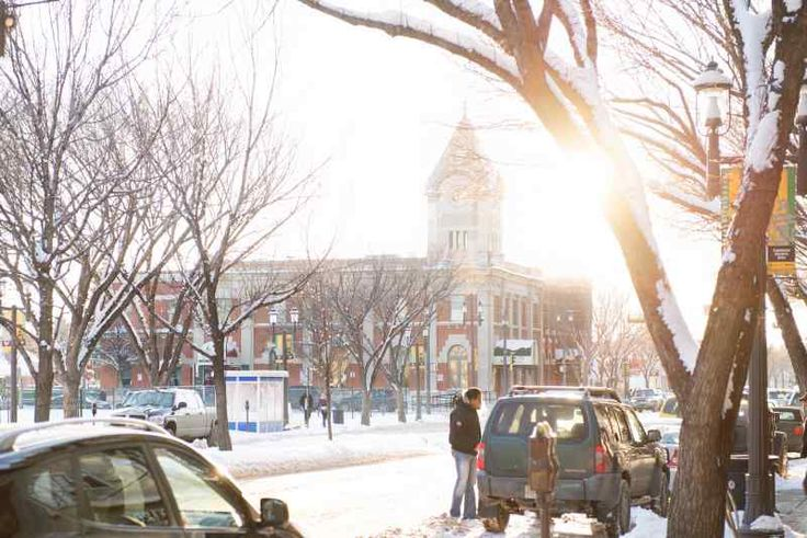 Things to do in Edmonton in Winter