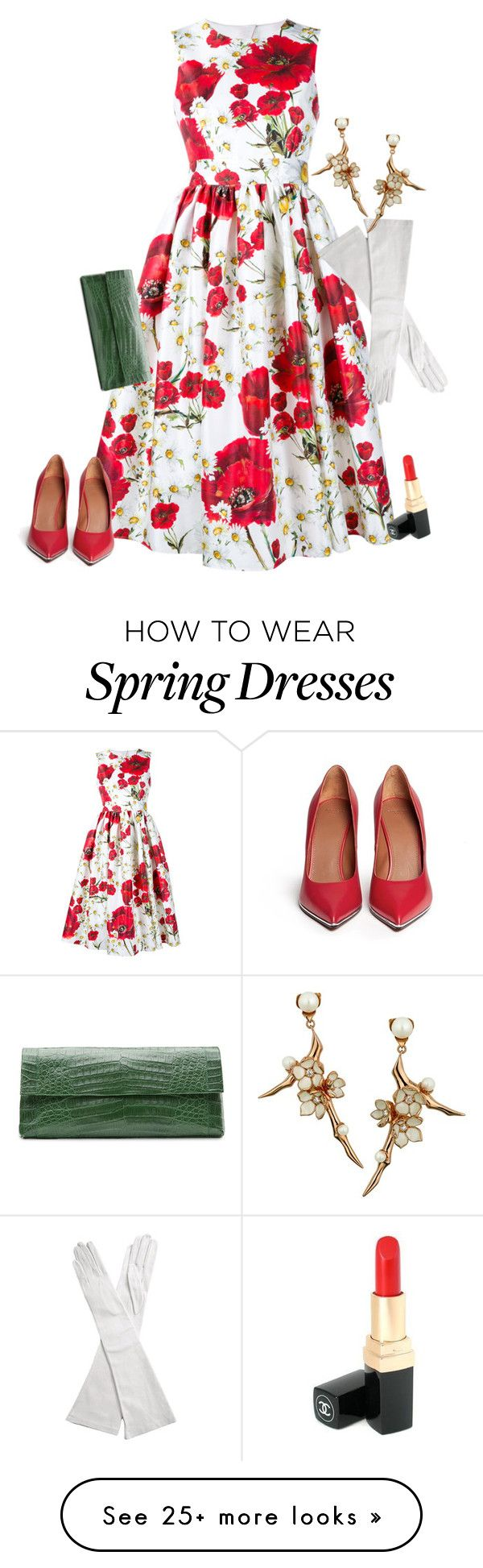 """Spring ball"" by winkiefingers on Polyvore featuring Dolce&Gabbana, Givenchy, Nancy Gonzalez, Chanel and Shaun Leane"