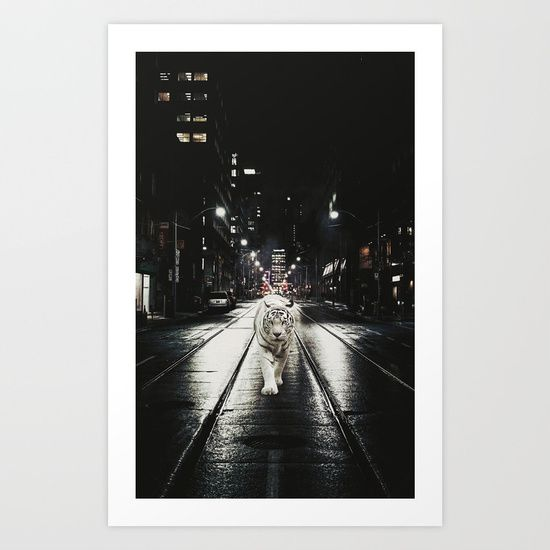 surrealism, digital, collage, animal, tiger