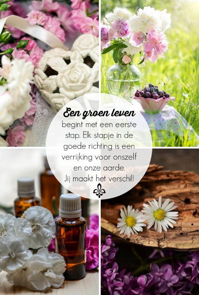In het groen leven met aromatherapie boek vind je meer dan 100 recepten om je eigen producten te maken