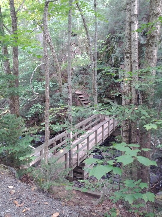 Lots of great bridges and stairs all through our hike
