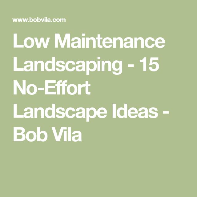 Low Maintenance Landscaping - 15 No-Effort Landscape Ideas - Bob Vila