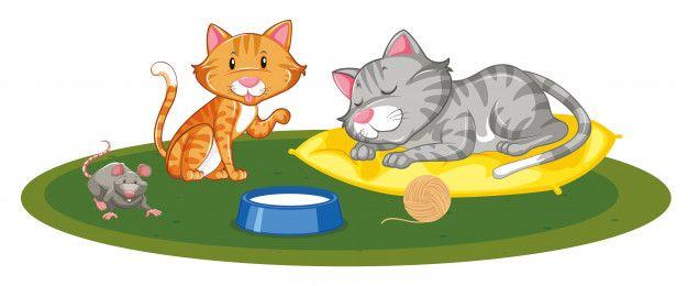 Dos Gatos Y Un Ratón Jugando Vector Gratuito Free Vector Freepik Vector Freebebe Freecaracter Freedibujos Animados Fre Cartoon Vector Free Cute Cartoon