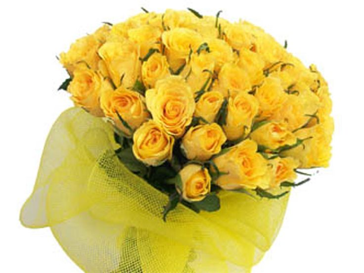 Hand tied bunch of 50 Yellow Roses with seasonal fillers wrapped in cellophane with a ribbon bows