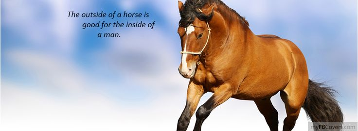 the outside of a horse is good for the inside of a man