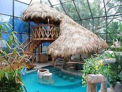 Beautiful World- Nature Love: Indoor Pools, Swim Pools, Dreams Backyard, Tropical Pool, Tropical Paradis, Dreams Pools, Backyard Pools, Pools Design, Tiki Bar