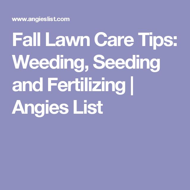 17 best ideas about fall lawn care on pinterest yard landscaping trees to plant and planting - Autumn lawn care advice ...