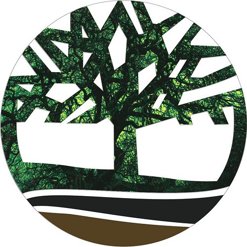Flash Timberland Logo Brands amp Logos Pinterest