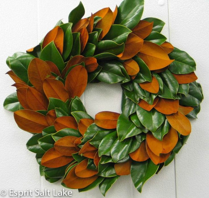 Magnolia Wreath round:
