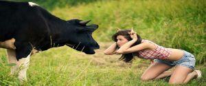 Hayvanların İntikamı (Komik görüntüler)