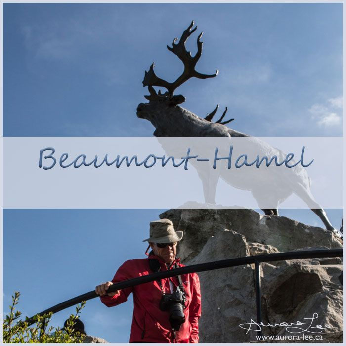 July 1st: Canada Day; also Memorial Day in Newfoundland, recognizing the sacrifice this day in 1916 at Beaumont-Hamel - Battle of the Somme.