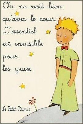 El petit príncep en francès