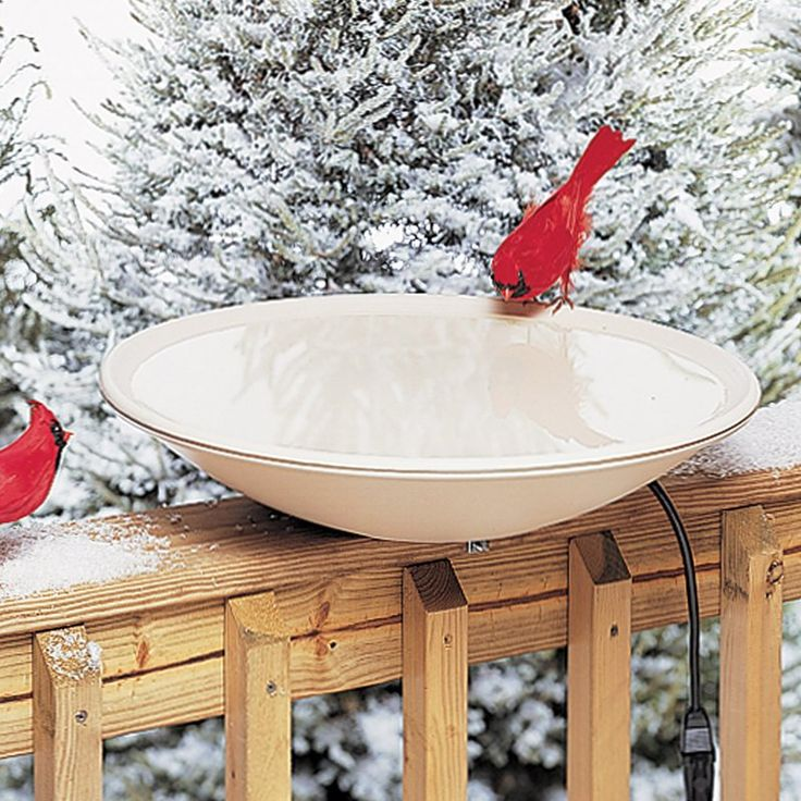 Allied Precision 20 in. Heated Bird Bath - No matter the weather your feathered friends will be happy with this Allied Precision 20 in. Heated Bird Bath. A heated bird bath, this one is mad...