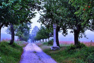 CLARISSIMUS: Prchlivost je nepřítelem rozvahy (Cicero). Cesty d...