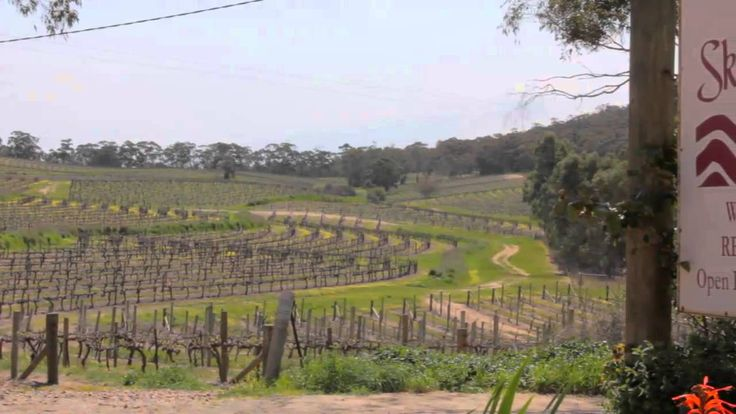 Clare Valley Riesling Trail - South Australia; great casual cycling adventure