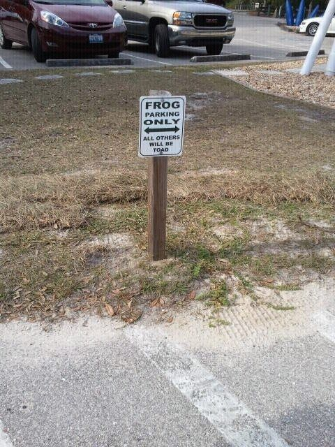 """""""Frog parking only. All others will be toad."""""""