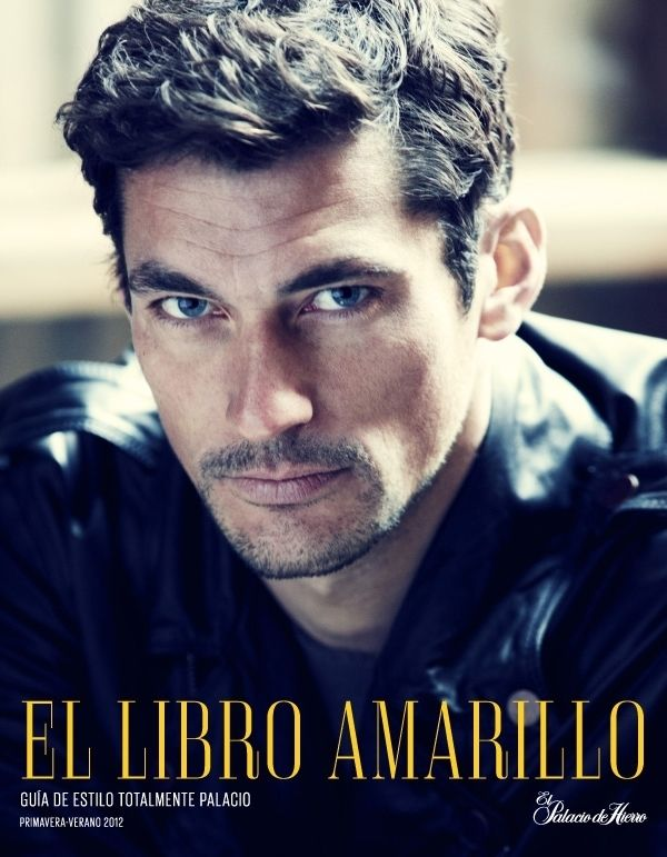 Cover of El Lebro Amarillo for El Palacio 2012. Model: David Gandy.
