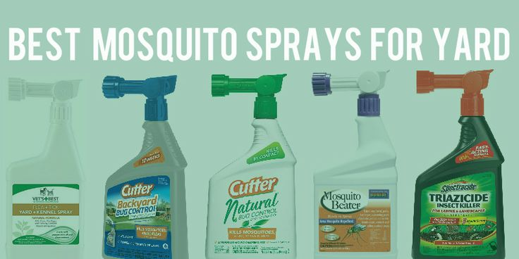 If you are looking for the best mosquito spray for yard, then you won't have to look too far, because this is a compilation of the best mosquito yard spray reviews, so you can chose the mosquito la…