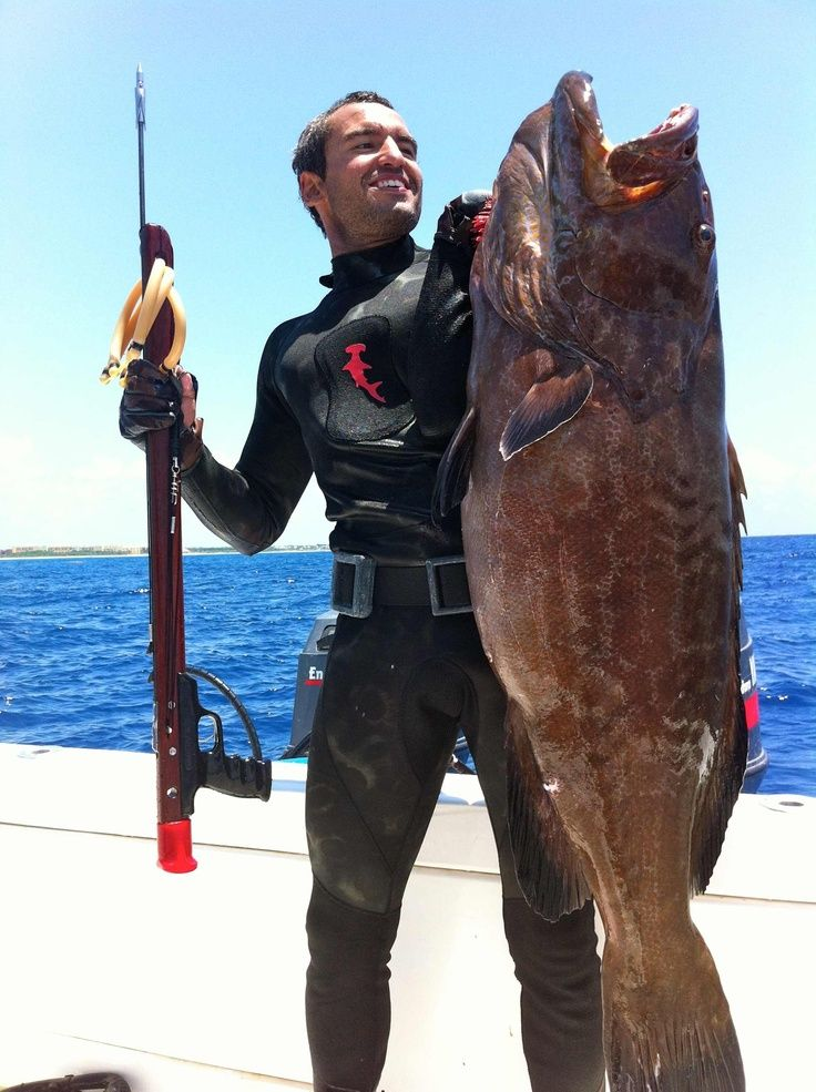 Essential spearfishing gear click to find buy for Essential fishing gear
