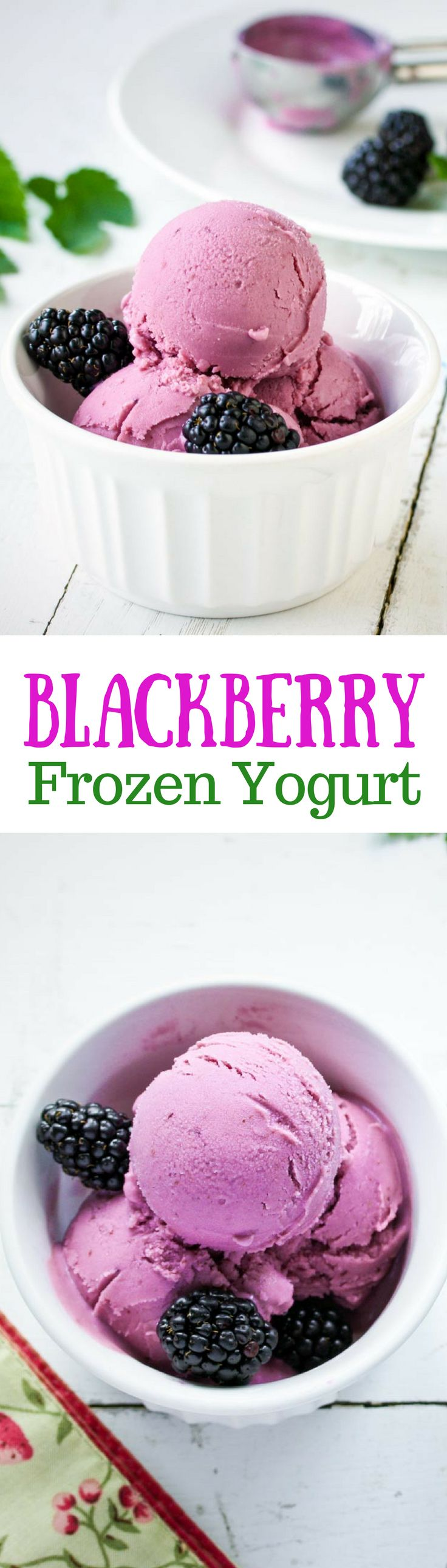 Blackberry Frozen Yogurt - a healthy way to enjoy a frozen dessert, sweetened with blackberries and honey   www.savingdessert.com
